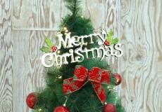 성탄절 발표